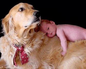 Породы собак для семей с детьми
