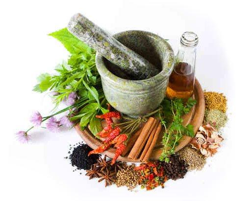 Фитотерапия - все ли травы одинаково полезны?
