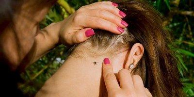 Как обезопасить себя и ребенка от клещей