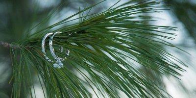 6 причин сыграть свадьбу зимой